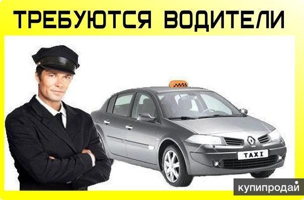 Крупное городское такси ищет водителей