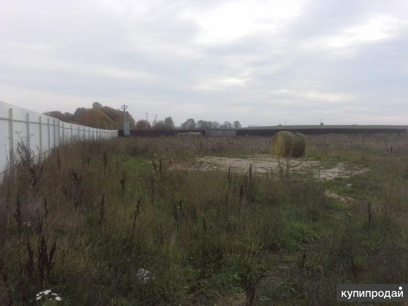 Продам 4 гектара земли Калужская область, Боровский район, д. Федорино