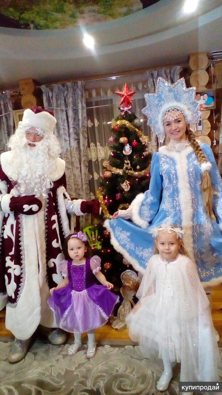 Дед Мороз и Снегурочка (Йошкар-Ола)