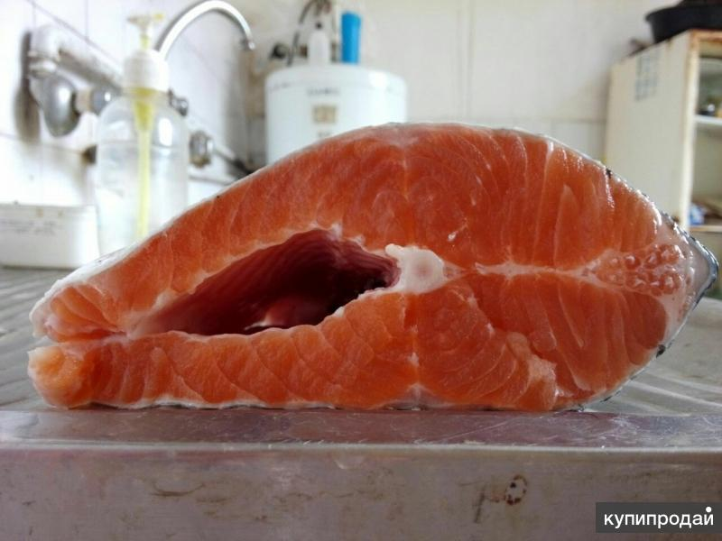 ООО «МЕЙГУ» занимается организацией прямых поставок морепродуктов из Ирана.