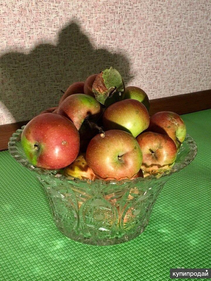 БОГЕМИЯ ХРУСТАЛЬ Ваза для фруктов