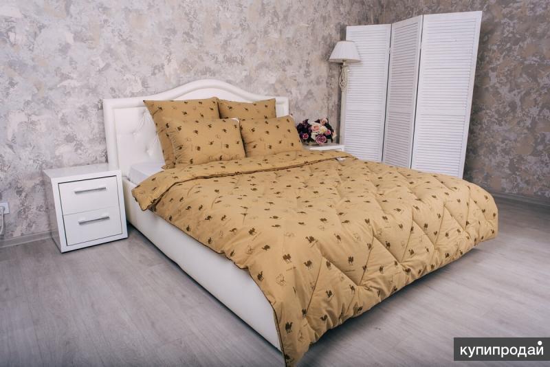 Одеяло Верблюжья шерсть 200г/м2, Тик (хлопок)