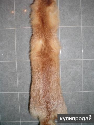 Продам мех лисы рыжей новый