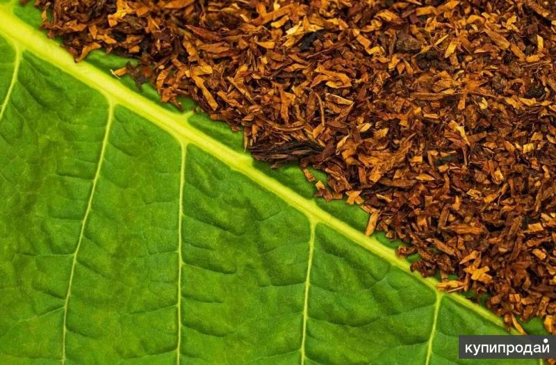 табак для сигарет развесной купить саратов