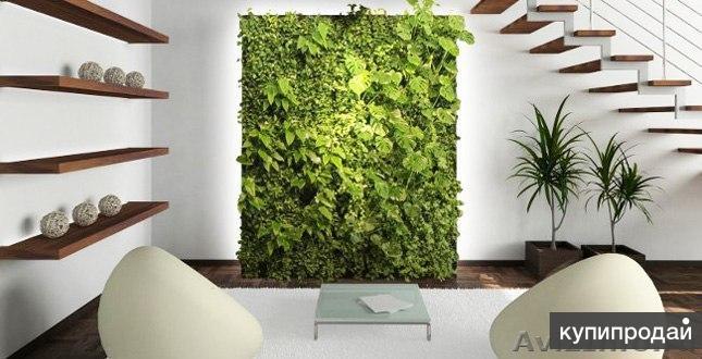 Сад на стене с автоматическим поливом!
