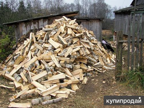Дрова колотые И пеньками береза дуб