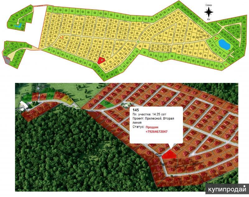 раздел земельного участка лесного Потому