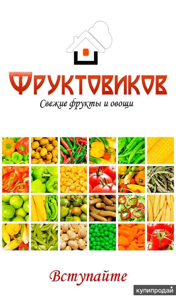 сообщения возникающих купить фрукты на овощебазе в спб разбор Свердловской