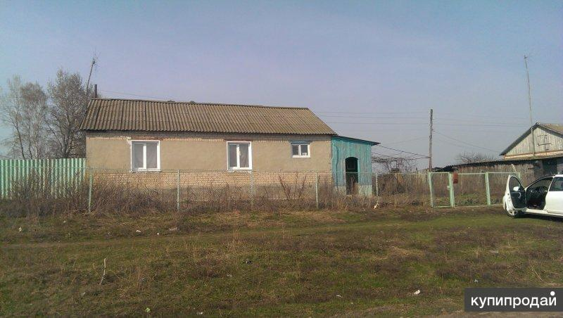 Жилой дом, в с. Мыцкое, 60км от Орла
