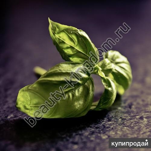 Эфирное масло Базилика благородного (Botanika)