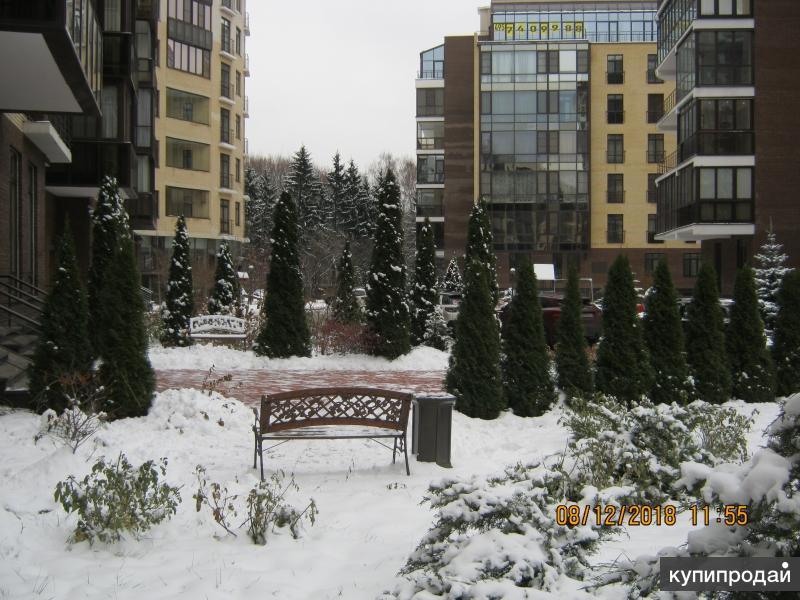 Элитная квартира-дача в старой Москве