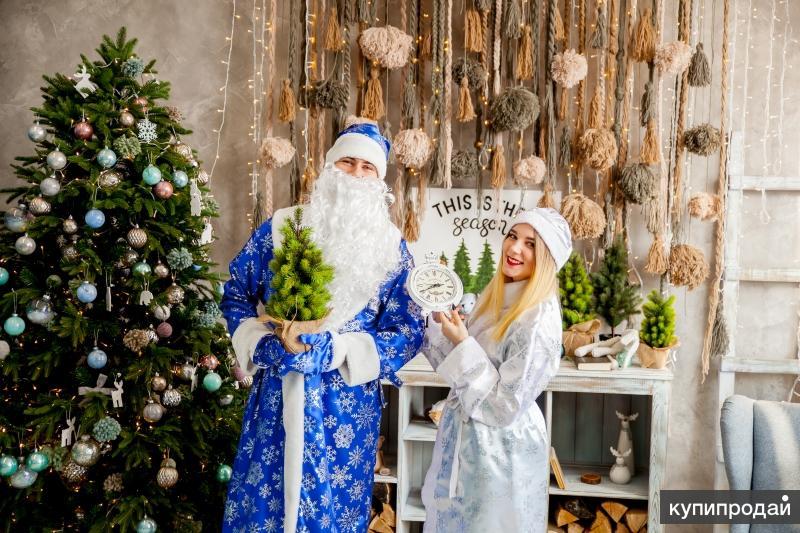 Ведущая праздников (Дед Мороз и Снегурочка, Ди-джей)
