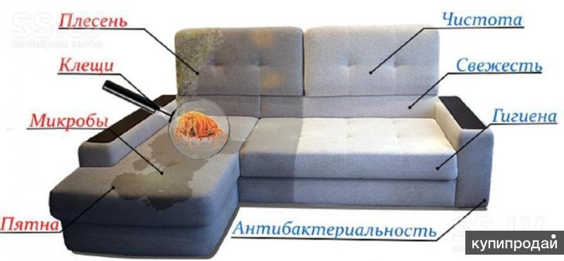 Химчистка мягкой мебели,ковров и автомобилей